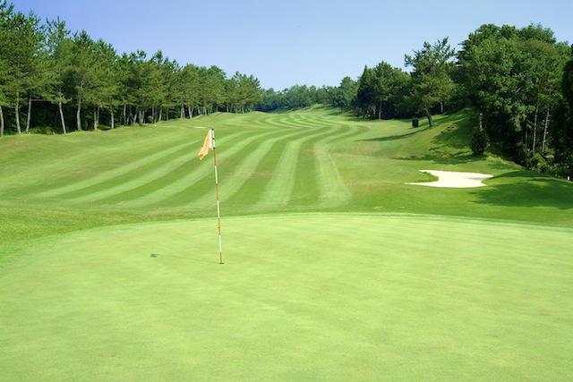 全国ゴルフプレーチケット バリューゴルフショップのメインイメージ